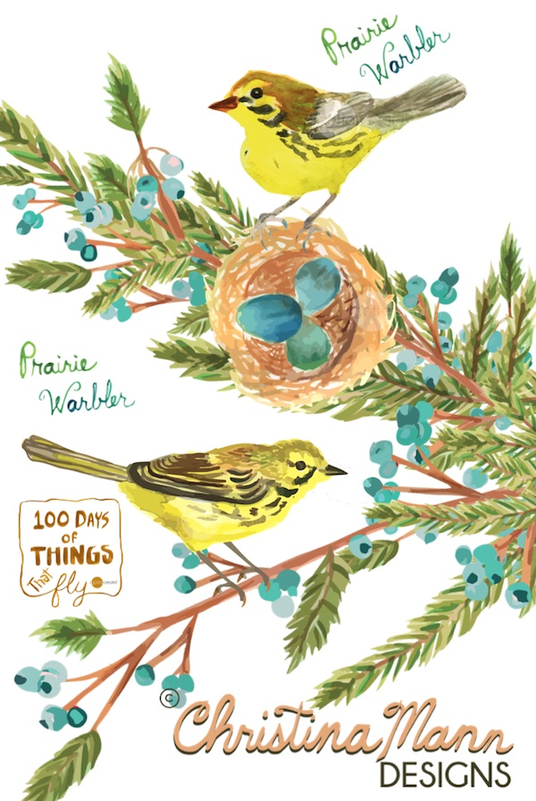 Prairie Warblers with Nest. Gouche by Christina Mann Designs