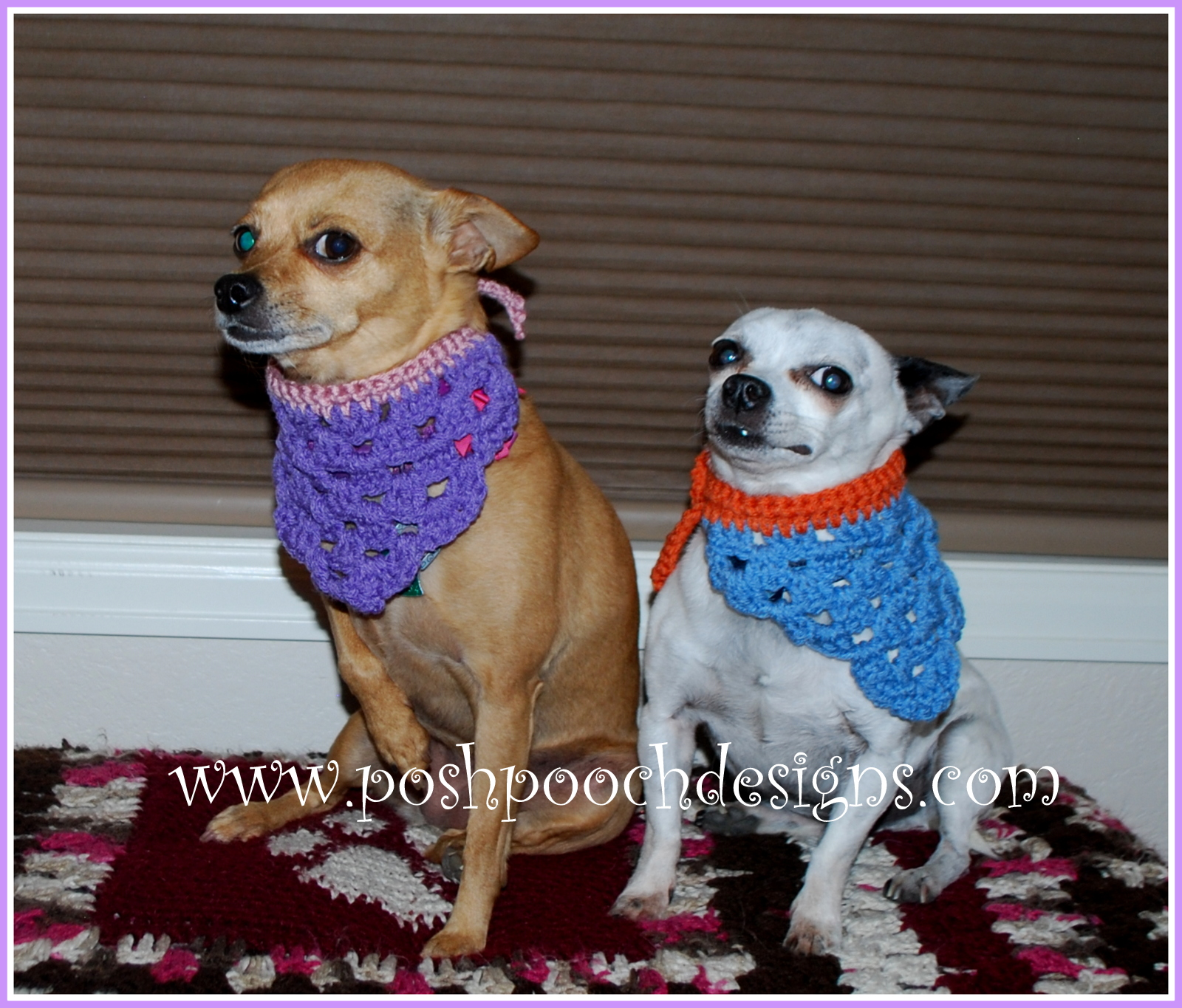 Free Crochet Pattern Dog Bandana ~ Pakbit for .