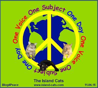 http://www.island-cats.com/?p=28431