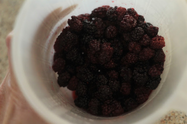 cooked blackberries for cobbler