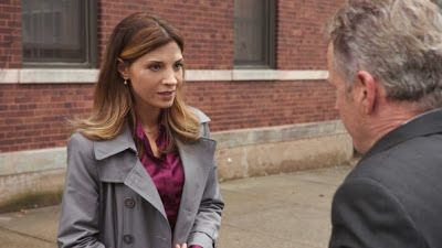 Callie Thorne as Terry D'Amico in Elementary Episode # 7 One Way To Get Off