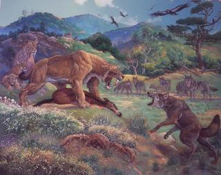 Canis Dirus vs Smilodon