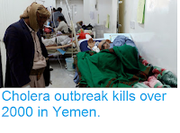 http://sciencythoughts.blogspot.com/2017/10/cholera-outbreak-kills-over-2000-in.html