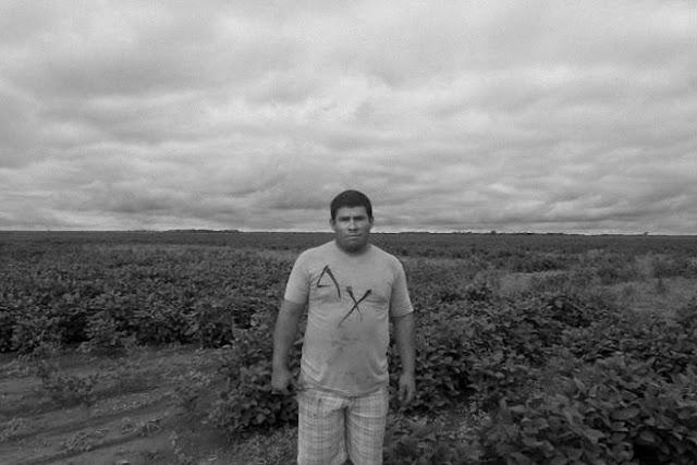 Argentina: nuevas denuncias de graves problemas de salud debidos al uso de los pesticidas