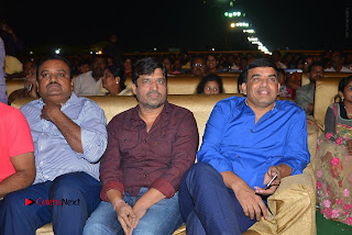 Nenu Local Audio Launch Stills  0172.JPG