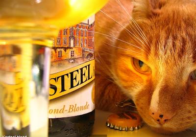 Kasteel Blond: Tadı da Bardağı Kadar Havalı Bir Belçika Birası