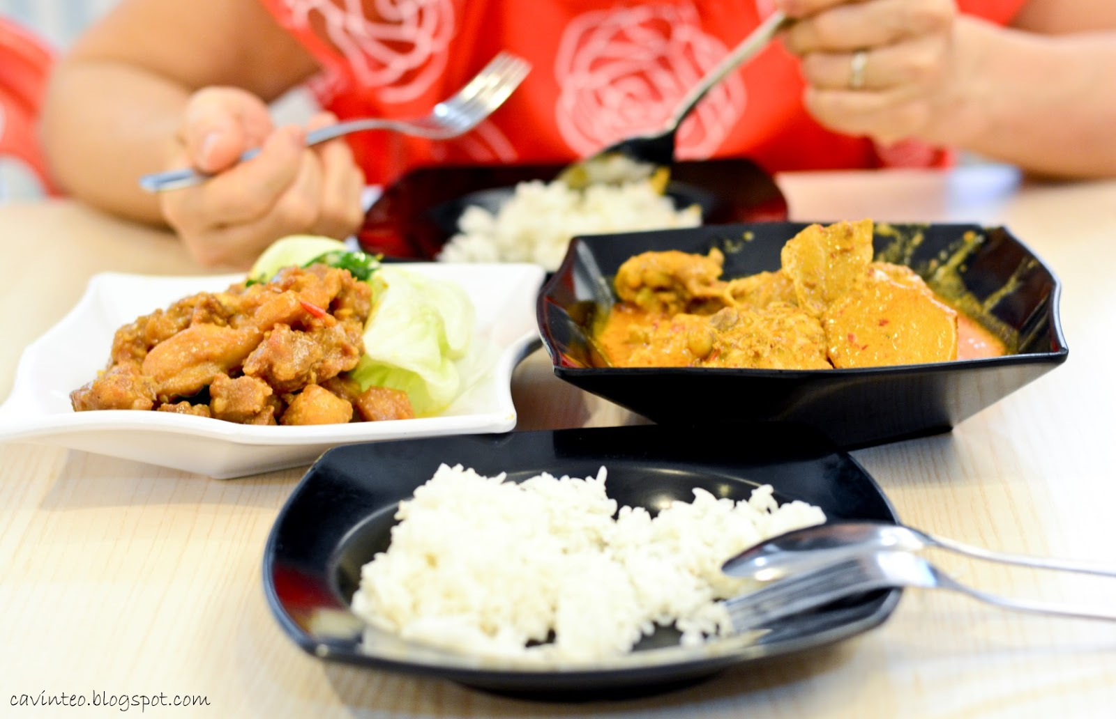 Entree kibbles shiok curry chicken from fu xiang kitchen emperor cream sauce chicken s900 forumfinder Choice Image