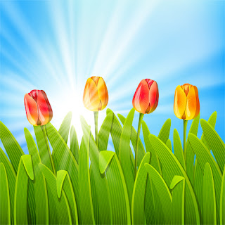 Clipart Image of a Field of Tulips