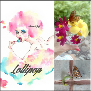 lollipop illustration and nature
