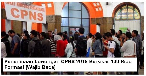 Seleksi Lowongan CPNS 2018 Berkisar 100 Ribu Formasi [Wajib Baca]