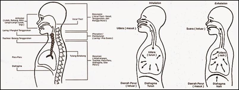 Teknik Pernafasan Vokal