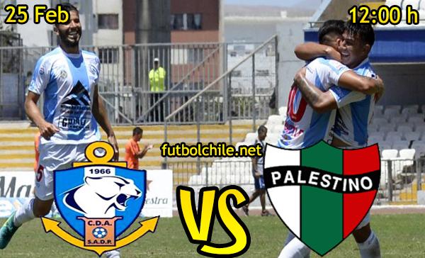 Ver stream hd youtube facebook movil android ios iphone table ipad windows mac linux resultado en vivo, online: Deportes Antofagasta vs Palestino