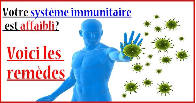 palntes-pour-renforcer-systeme-immunitaire