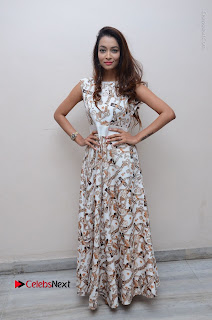 Telugu Actress Reshmi Thakur in Long Dress at Plus One ( 1) Audio Launch  0069.jpg