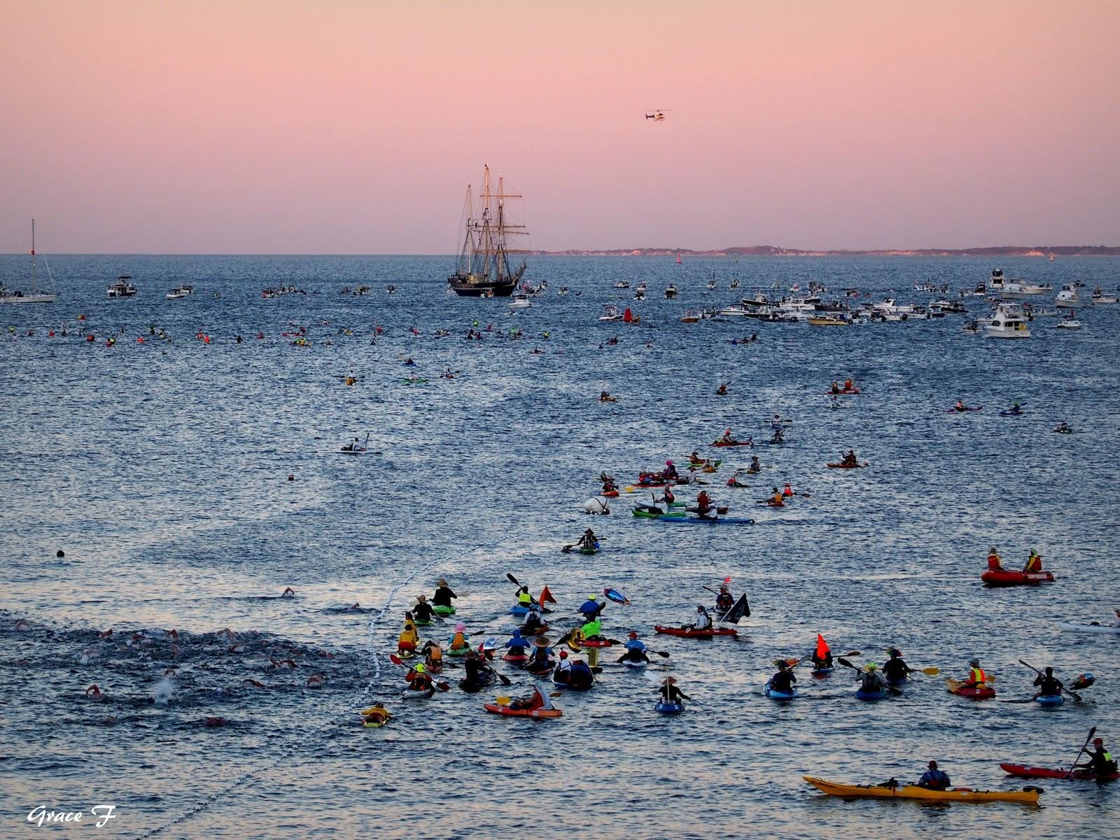 Perth Daily Photo Rottnest Channel Swim