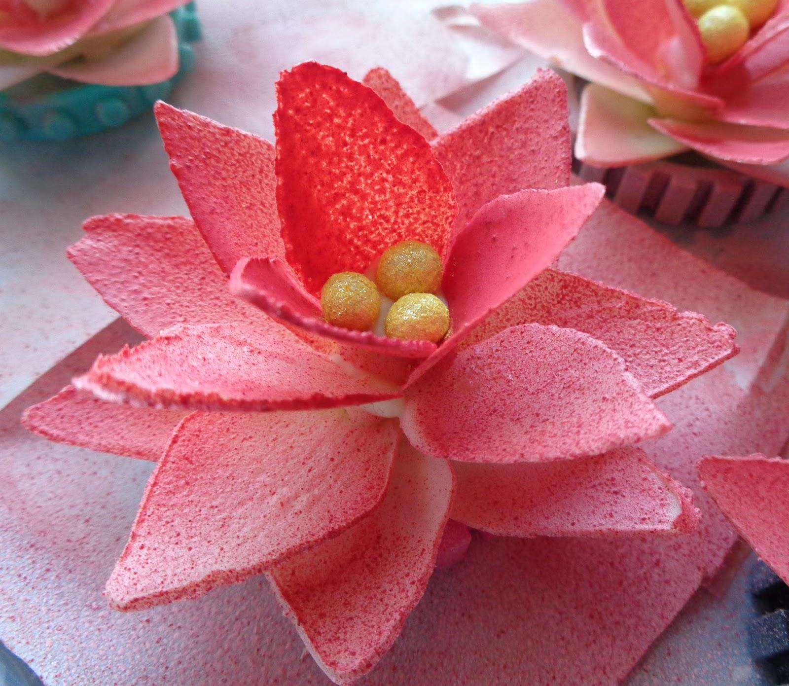 minicuisine test pour fleur de n nuphar en chocolat. Black Bedroom Furniture Sets. Home Design Ideas