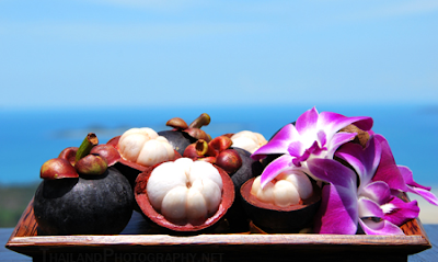 Great benefits of peel mangosteen
