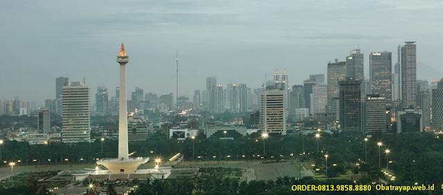 Tempat Jual Obat Anti Rayap di Jakarta