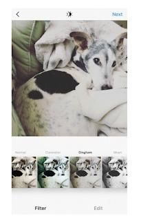 Membuat Akun Instagram di iPhone, Begini Caranya