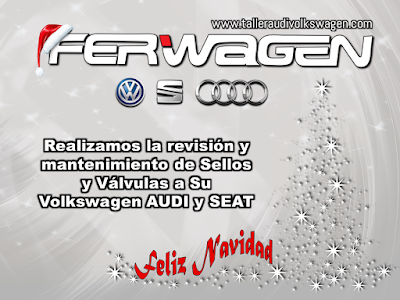 Servicios Mantenimiento AUDI VW SEAT