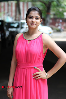 Actress Gayatri Rema Pictures in Pink Dress  0008.jpg