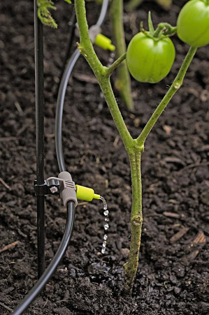 Micro Drip Irrigation Kit