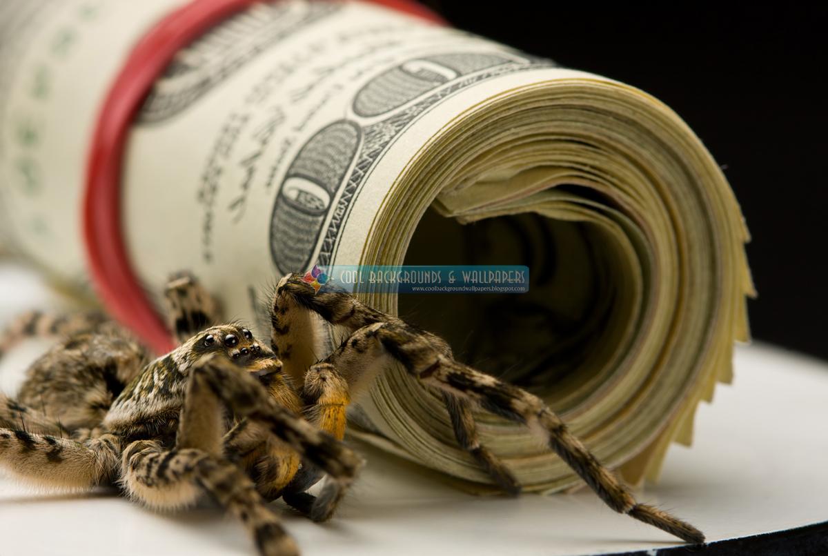 3d Money Wallpaper Qq Wallpapers Money Hd Wallpapers Set 2