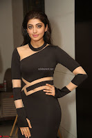 Pranitha Subhash in a skin tight backless brown gown at 64th Jio Filmfare Awards South ~  Exclusive 176.JPG