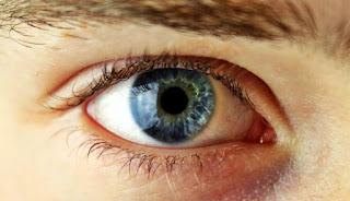 jenis-lensa-kontak-mata
