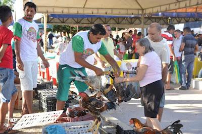 Resultado de imagem para feira da agricultura familiar de chapadinha