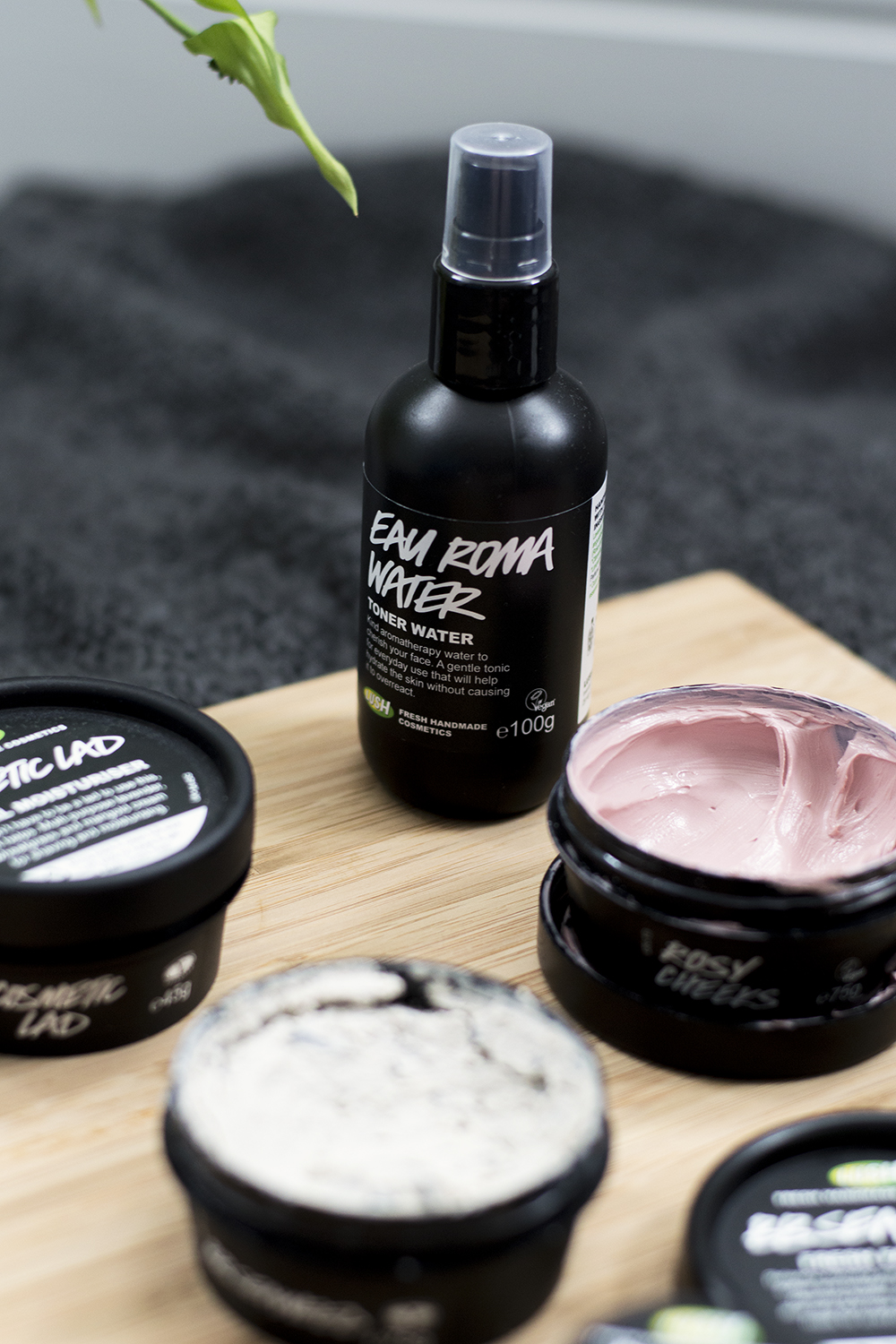 Cruelty Free Skincare: My favourite Lush Products