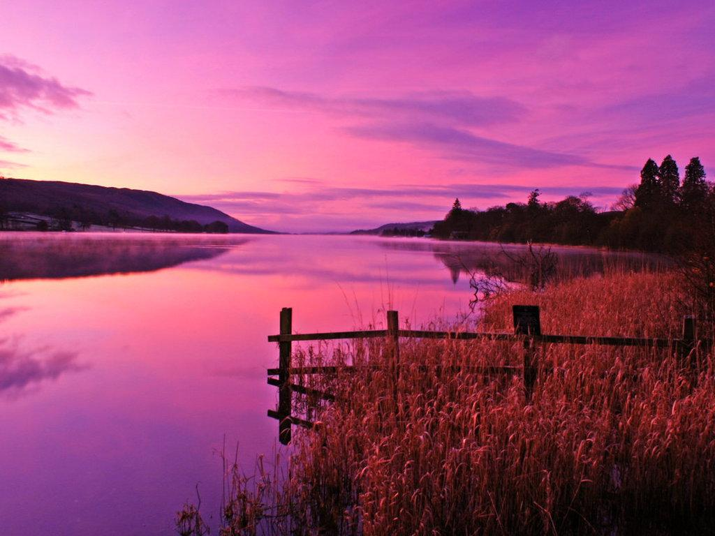 Pink Sky Pink Water Pink Sunset