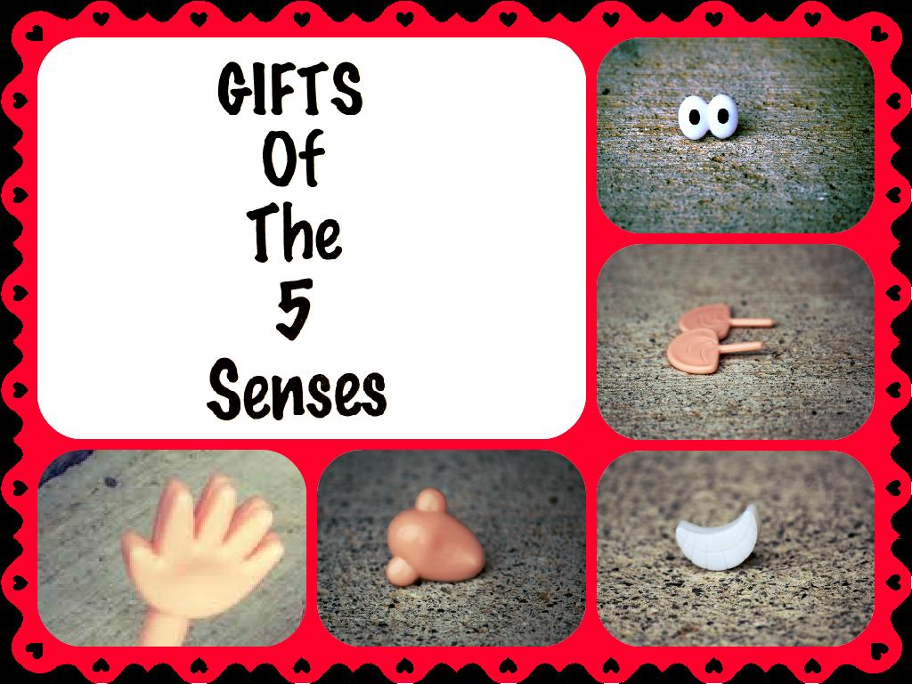 5 senses essay