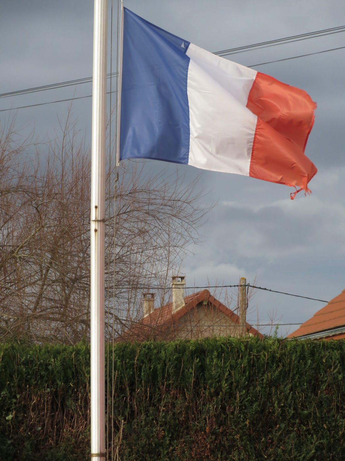 Malone 03 allier bourbonnais statistique des messages for Jardin hamel 2015