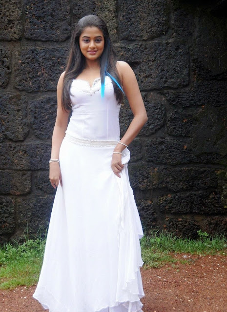 Malayalam hot actress Priyamani Photos
