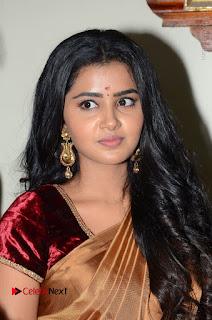 Actress Anupama Parameswaran Stills in Silk Saree with Shatamanam Bhavati Team at Sandhya Theater  0015.JPG