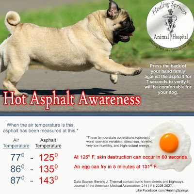 Earth Heart Inc.: At 86 degrees outside temperature, asphalt is 135 degrees - hot enough to fry an egg and your pet's paws!