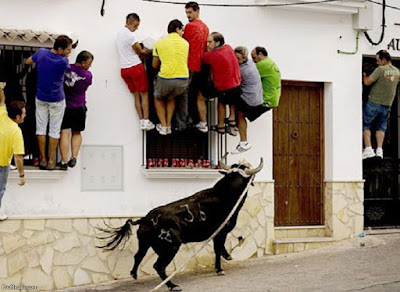 Window climbing during the Running of the bull