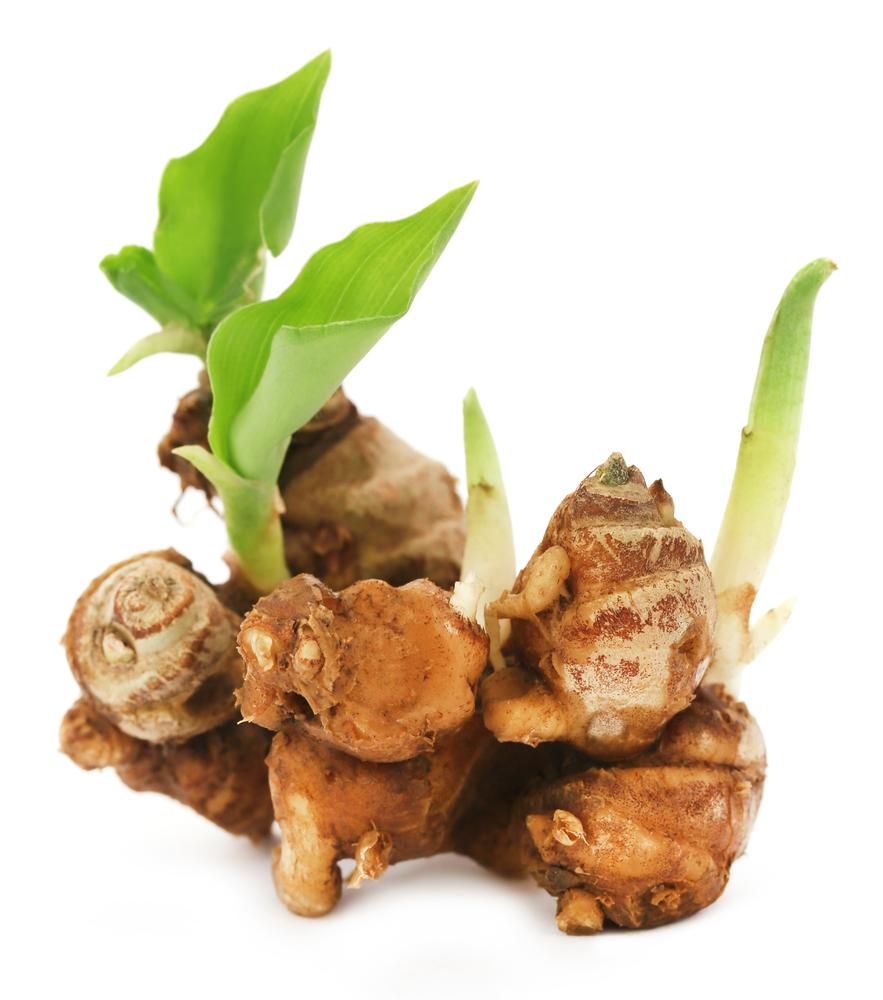 Obat Batuk Herbal Alami, Ampuh Menyembuhkan Batuk Pada