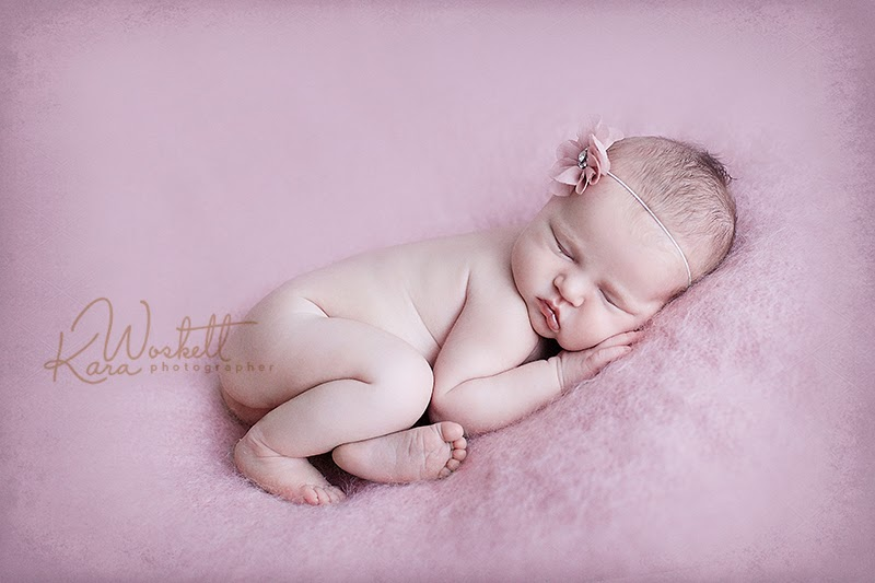 Auckland portrait photographer maternity pregnancy newborn baby family photography