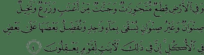 Surat Ar Ra'd Ayat 4