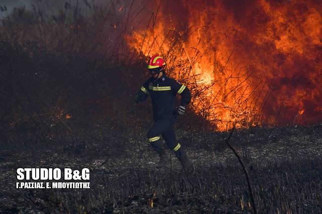 Πυρκαγιά στην Τροιζηνία