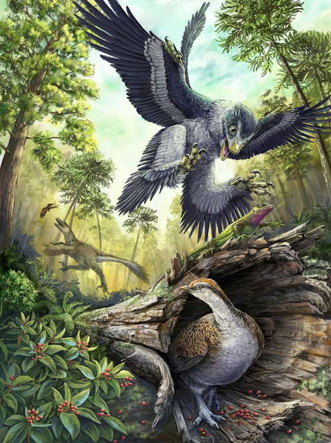 Beaked birds champions of the last mass extinction