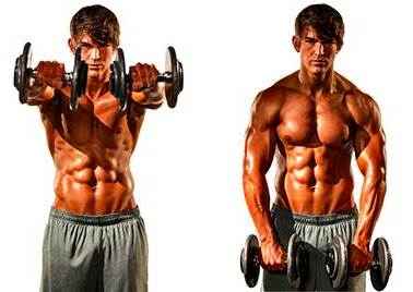 Front elevations/raises with dumbbells.