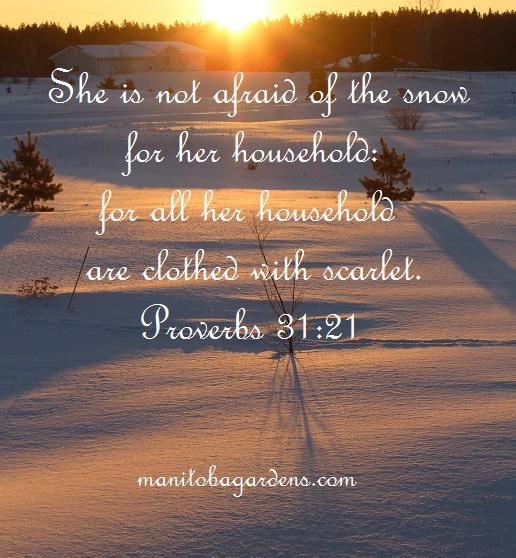 Proverbs 31:21