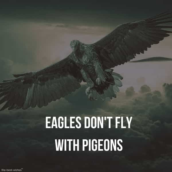 Inspiring Quotes Images on Flying Like an Eagle.