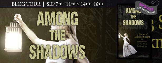 http://www.rockstarbooktours.com/2015/09/tour-schedule-among-shadows-13-stories.html