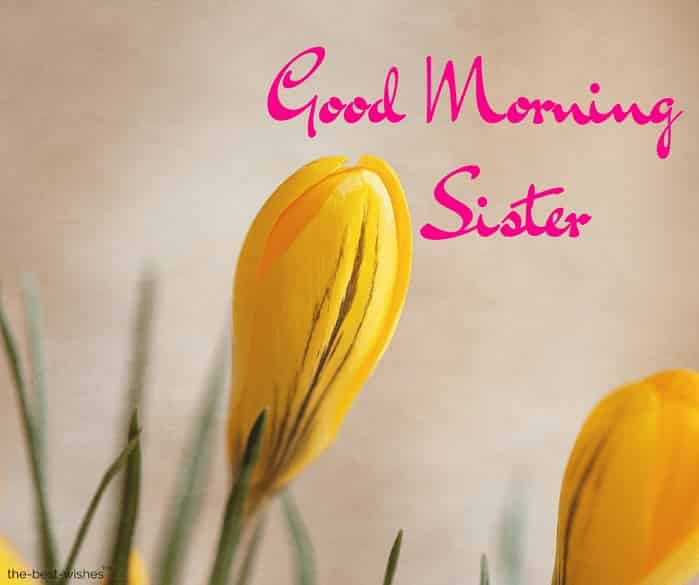good morning sister ji