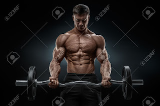 Bodybuilding Photos  For Download, Gallery And Wallpaper