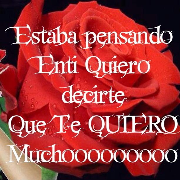 Mensaje Te Quiero con rosa roja